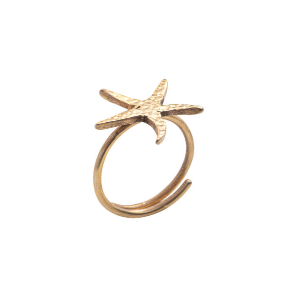Asterias Ring - silver 925, gold plated